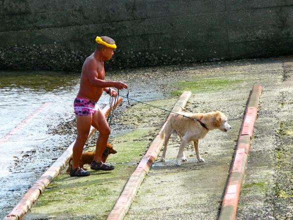 Onjuku beach dweller